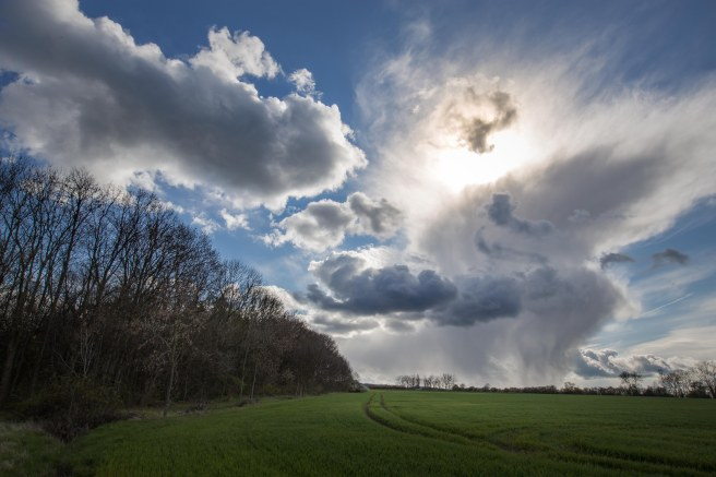 xwolken-1-von-1-5
